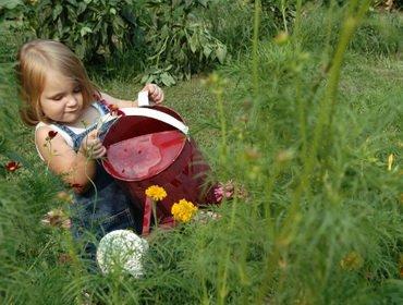 Стоит ли использовать детский труд на природе на даче