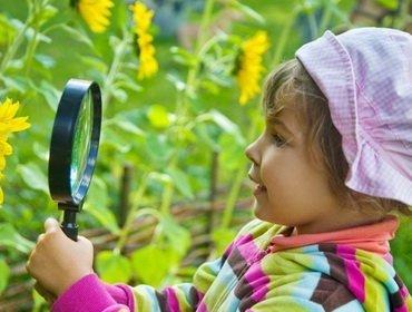 Ознакомление детей с природой