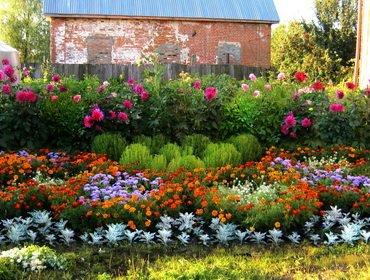 Сезонные цветники