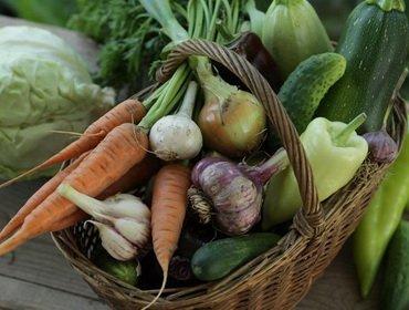 Правильное хранение овощей – залог здоровой пищи