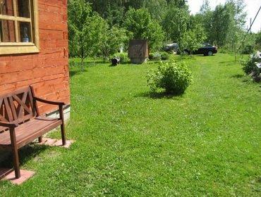 Простой газон на даче легко