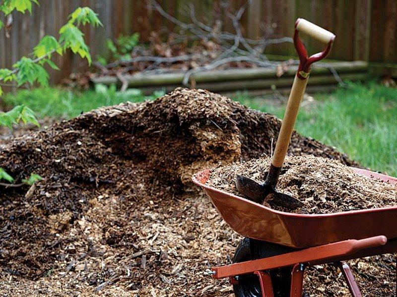 Мульчирование почвы: что это такое и зачем нужно