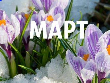 Календарь садовода-огородника на март 2017 года: что делать в саду