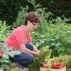 Работы в саду и на огороде в августе: подкормки и удобрения растений