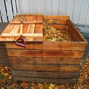 Какие осенние работы нужно выполнить в саду и огороде в ноябре (с видео) фото