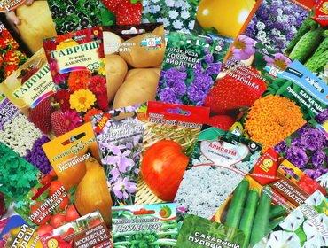 Как правильно выбрать семена: определение качества
