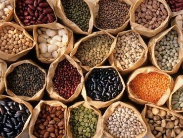 Хранение семян: правила и особенности