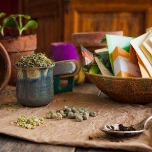 Способы предпосевной подготовки семян и отбор посадочного материала