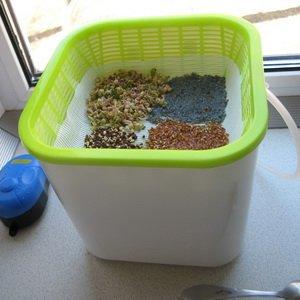 Как подготовить семена к посадке рассады: барботирование