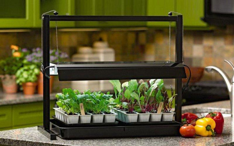 Лампа для домашнего выращивания растений 10