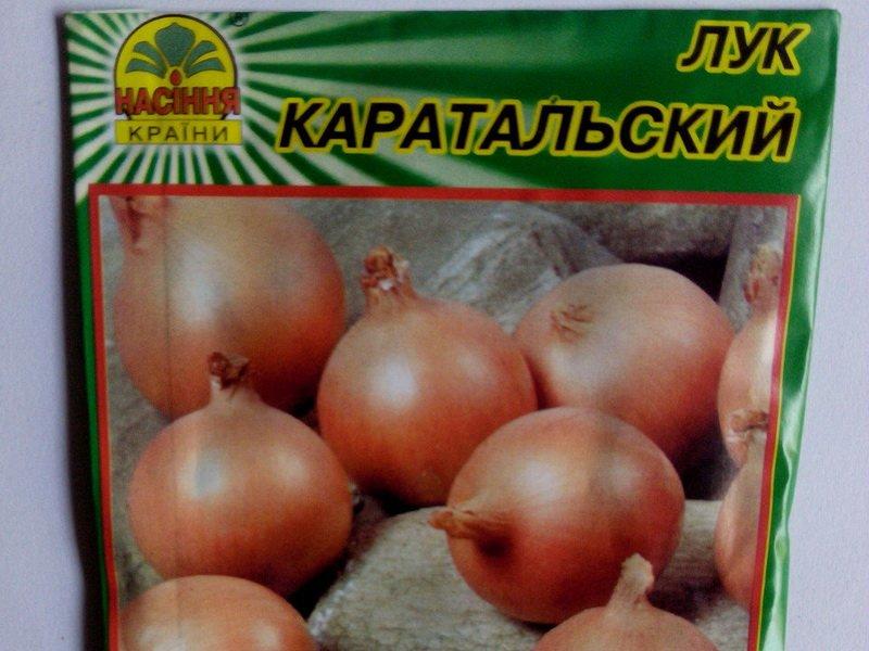 Семена лука Каратальского