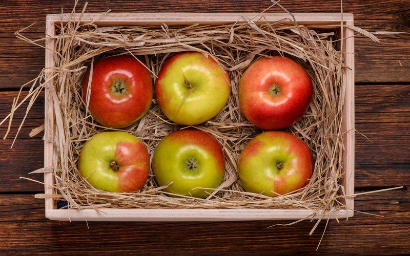Как хранить яблоки и груши