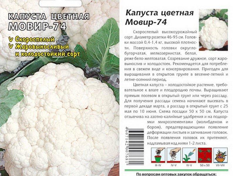 Какой сорт цветной капусты лучше сажать в подмосковье в открытый грунт 76