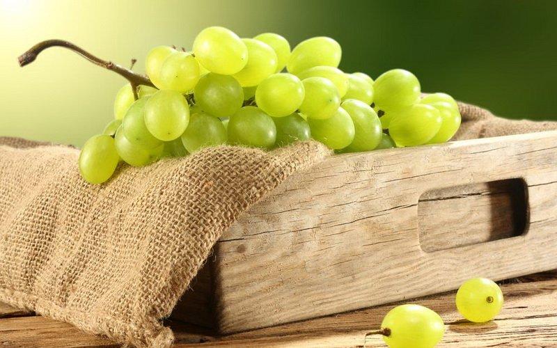 Как хранить виноград, дыни и арбузы