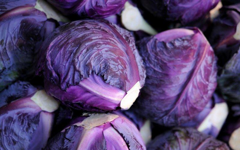 Температурный режим и виды хранения овощей семейства Капустных фото