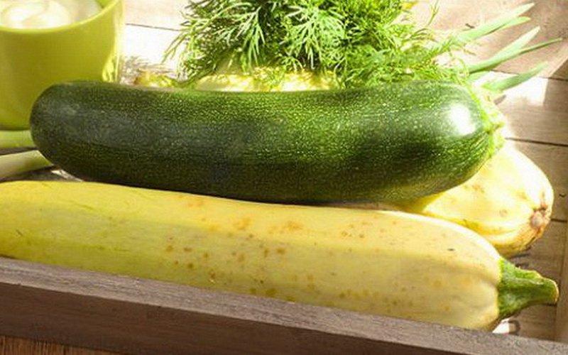 Как лучше сохранить овощи: закладка на хранение тыкв, кабачков и сельдерея фото
