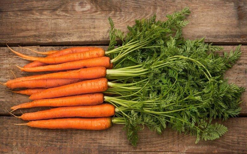 Режимы и способы хранения овощей: как правильно сохранить морковь
