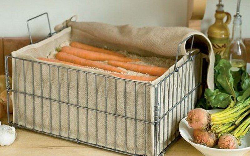 Хранение моркови во мху-сфагнуме