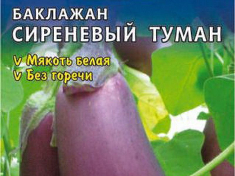 Семена баклажана «Сиреневый туман» на фото