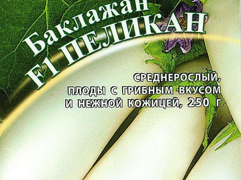 Семена баклажана «Пеликан» F1 на фото