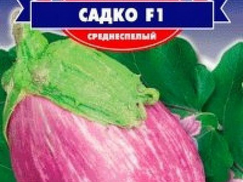 Семена баклажана «Садко» F1 на фото