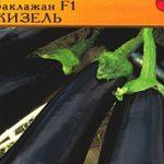 Описание и выращивание сорта баклажан Максик