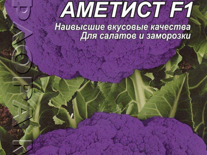 Семена цветной капусты «Аметист» F1 на фото