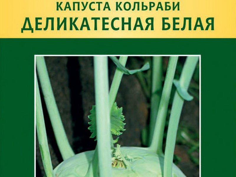 Семена капусты кольраби «Деликатесная белая» на фото