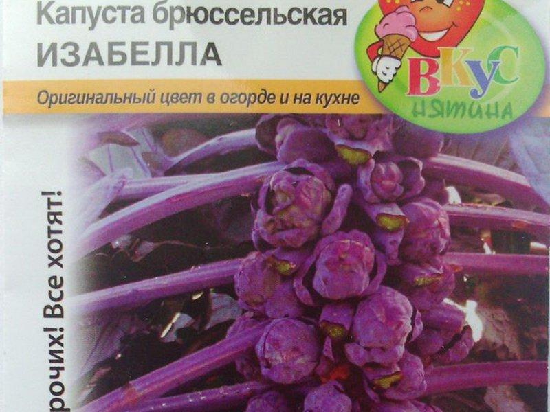 Семена брюссельской капусты «Изабелла» на фото