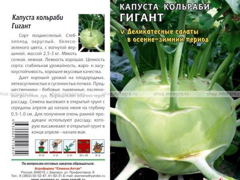 Семена капусты кольраби «Гигант» на фото