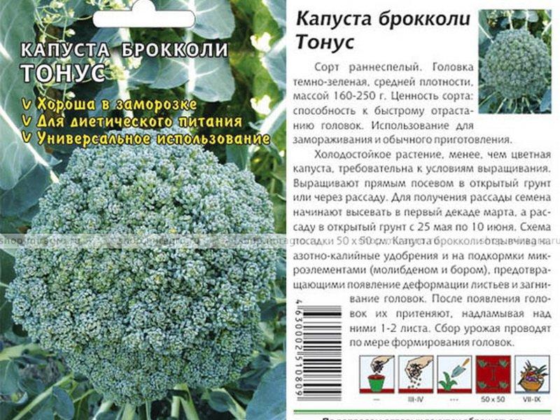Семена капусты брокколи «Тонус» на фото