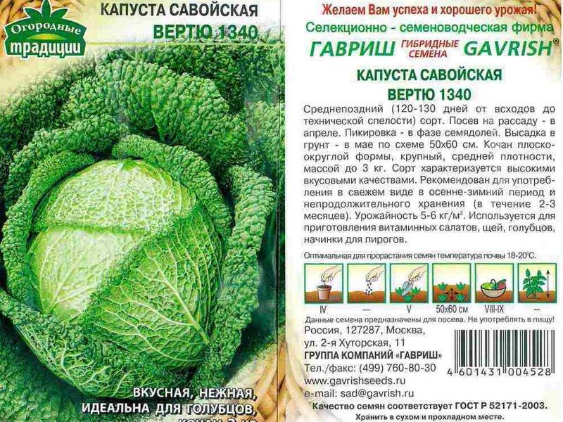 Семена савойской капусты «Вертю 1340» на фото
