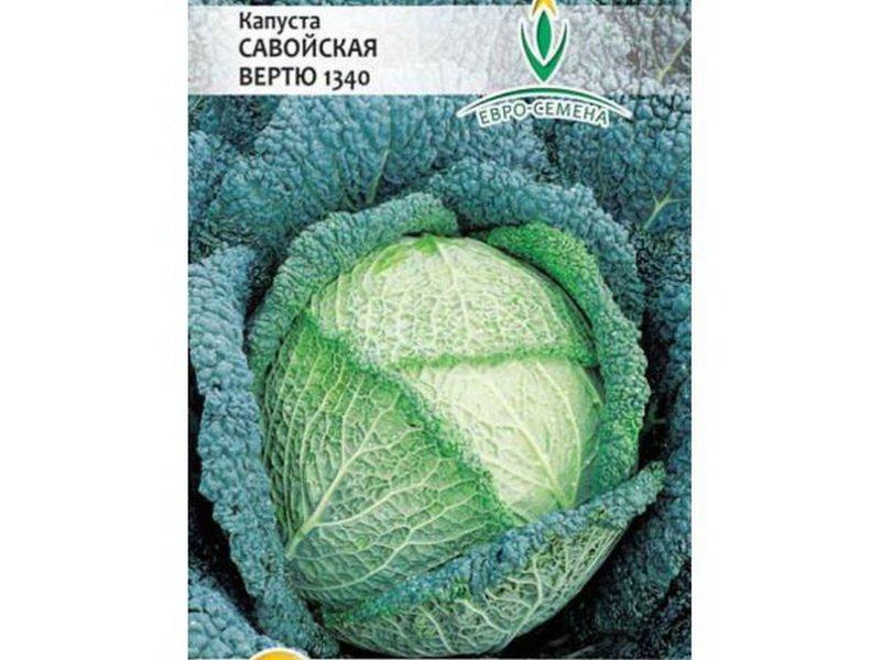Семена савойской капусты «Вертю» на фото