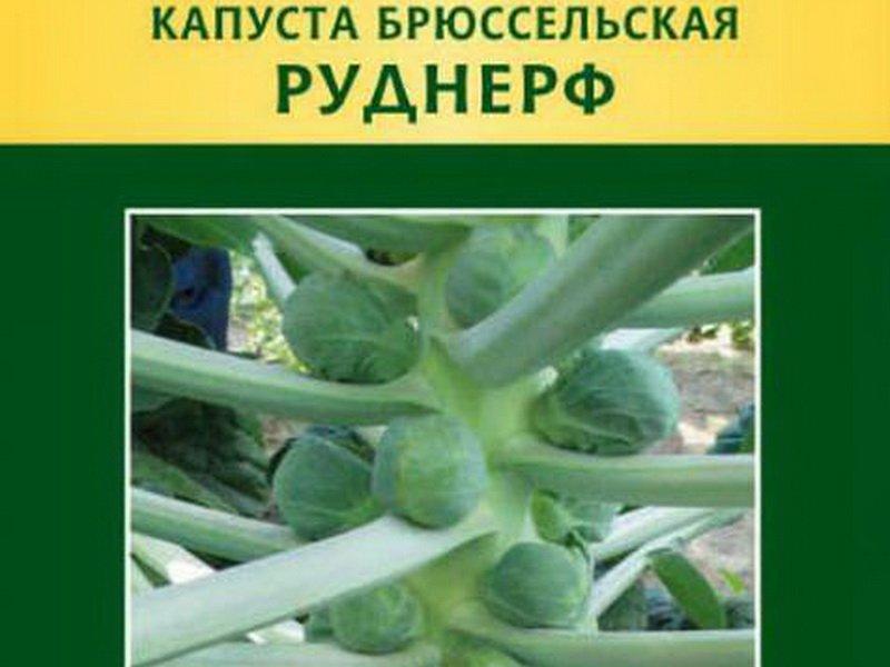 Семена брюссельской капусты «Руднерф» на фото