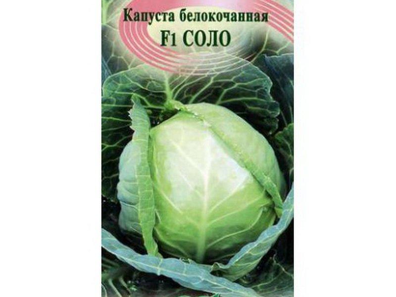 Семена белокочанной капусты «Соло» F1 на фото