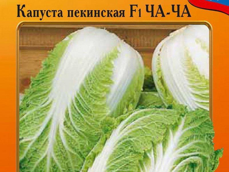 Семена пекинской капусты «Ча-ча» F1 на фото