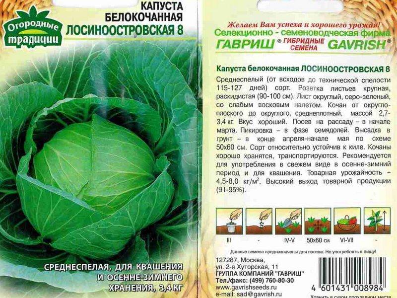 Семена белокочанной капусты «Лосиноостровская 8» на фото