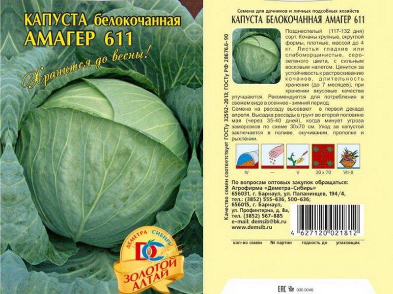 Семена белокочанной капусты «Амагер 611» на фото