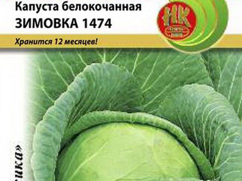 Семена белокочанной капусты «Зимовка» 1447 на фото