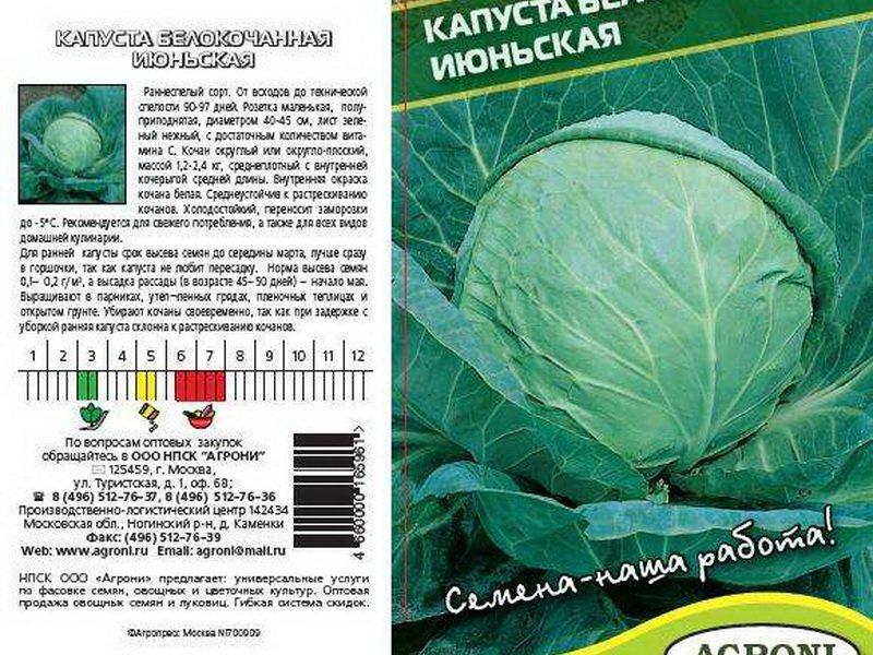 Семена белокочанной капусты «Июньская» на фото