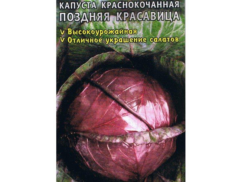 Семена краснокочанной капусты «Поздняя красавица» на фото