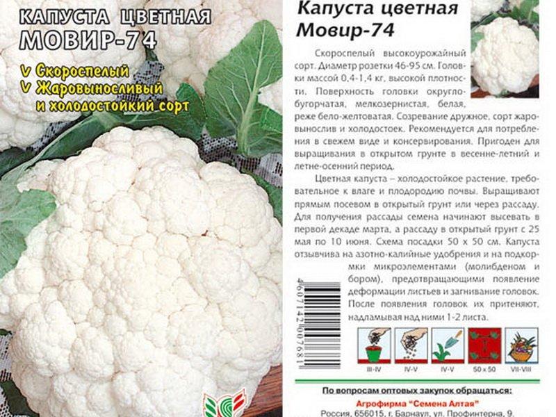 Семена цветной капусты «Мовир 74» на фото