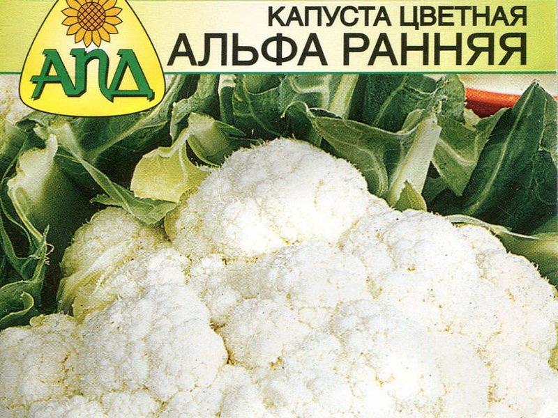 Семена цветной капусты «Альфа ранняя» на фото