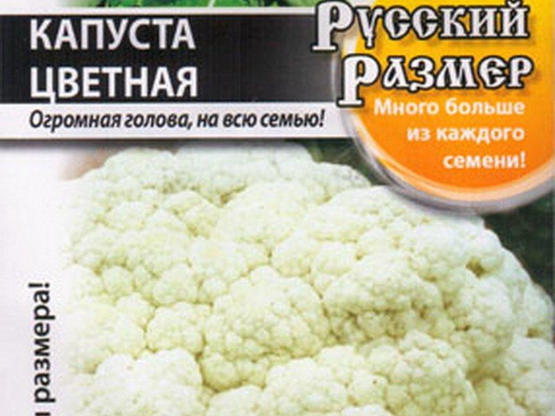 Семена цветной капусты «Русский размер» F1 на фото