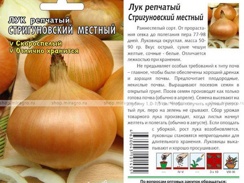 Семена репчатого лука «Стригуновский местный» на фото