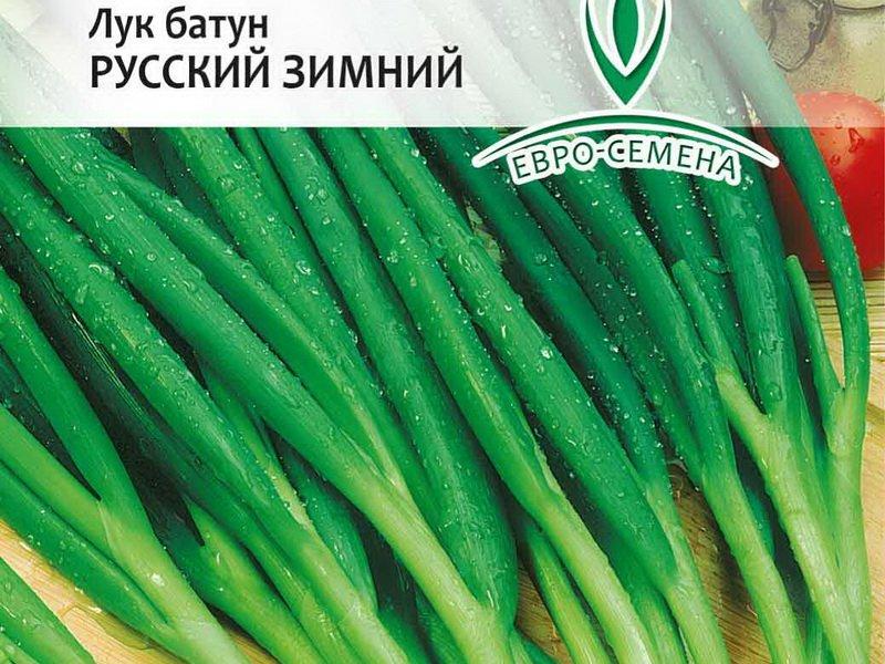 Семена Лука-батуна «Русский зимний» на фото