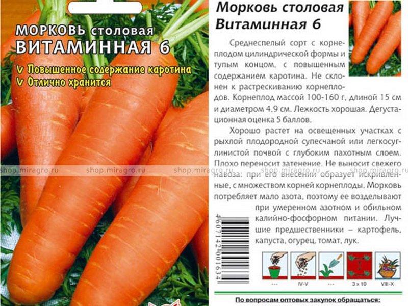 Семена моркови «Витаминная 6» на фото