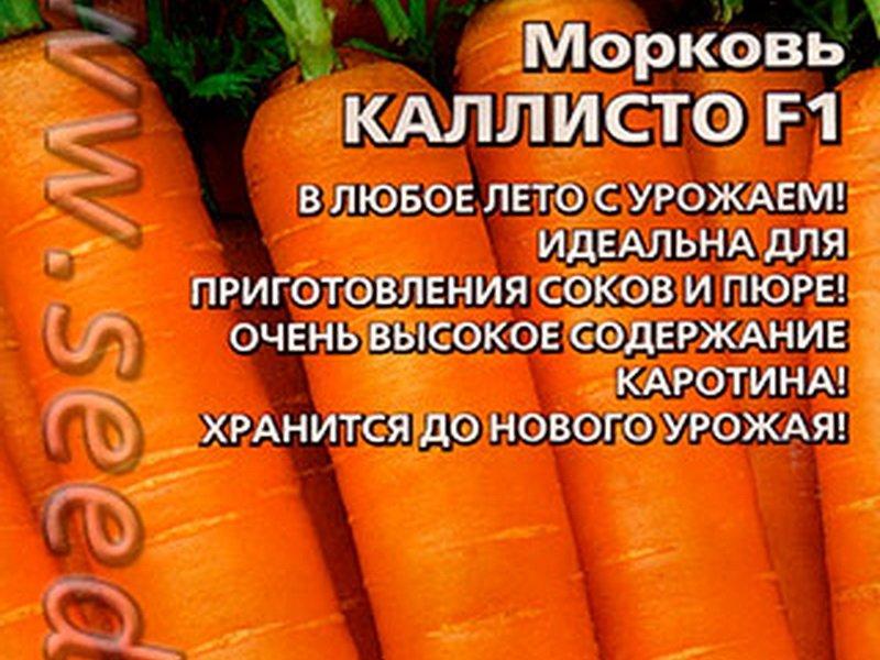 Семена моркови «Каллисто» F1 на фото