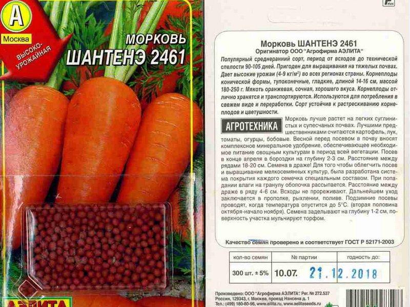 Семена моркови «Шантенэ 2461» на фото