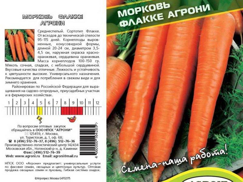 Семена моркови «Флакке» на фото